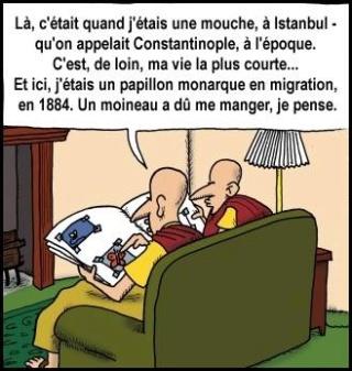 Rire et religion - Page 13 Humour10