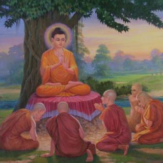 Le récit de la quête immaculée - Ariyapariyesanā Sutta  - MN 26 Teachi10