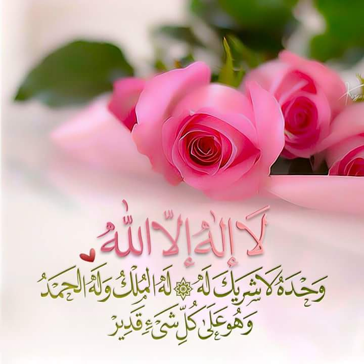 L'islam Pilule12