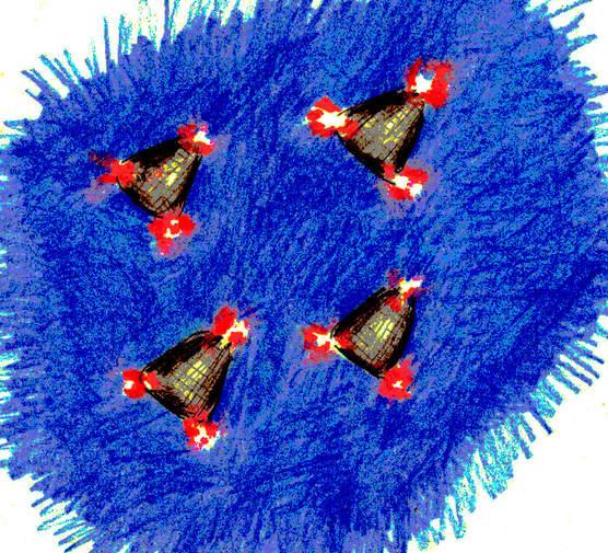 4 objets triangulaires en Pennsylvanie 89450-10