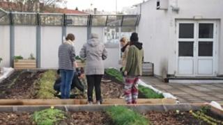Un exemple à suivre de ferme urbaine : 28588211