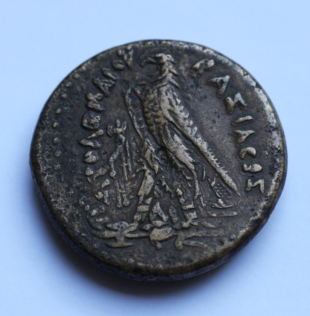 AE41 de Ptolomeo III. Alexandría Dr10