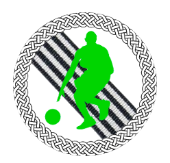 CIMN (Championnat inter-micromondial de nasket) 161-1610
