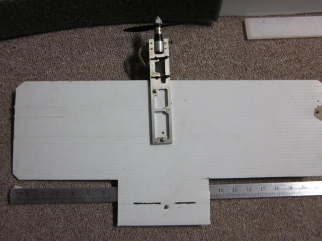 Platter 15 And ManWin Trainer  Coro_012