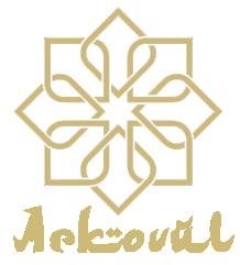 1er Colloque International du Sport Automobile  - Page 2 Arkovu11