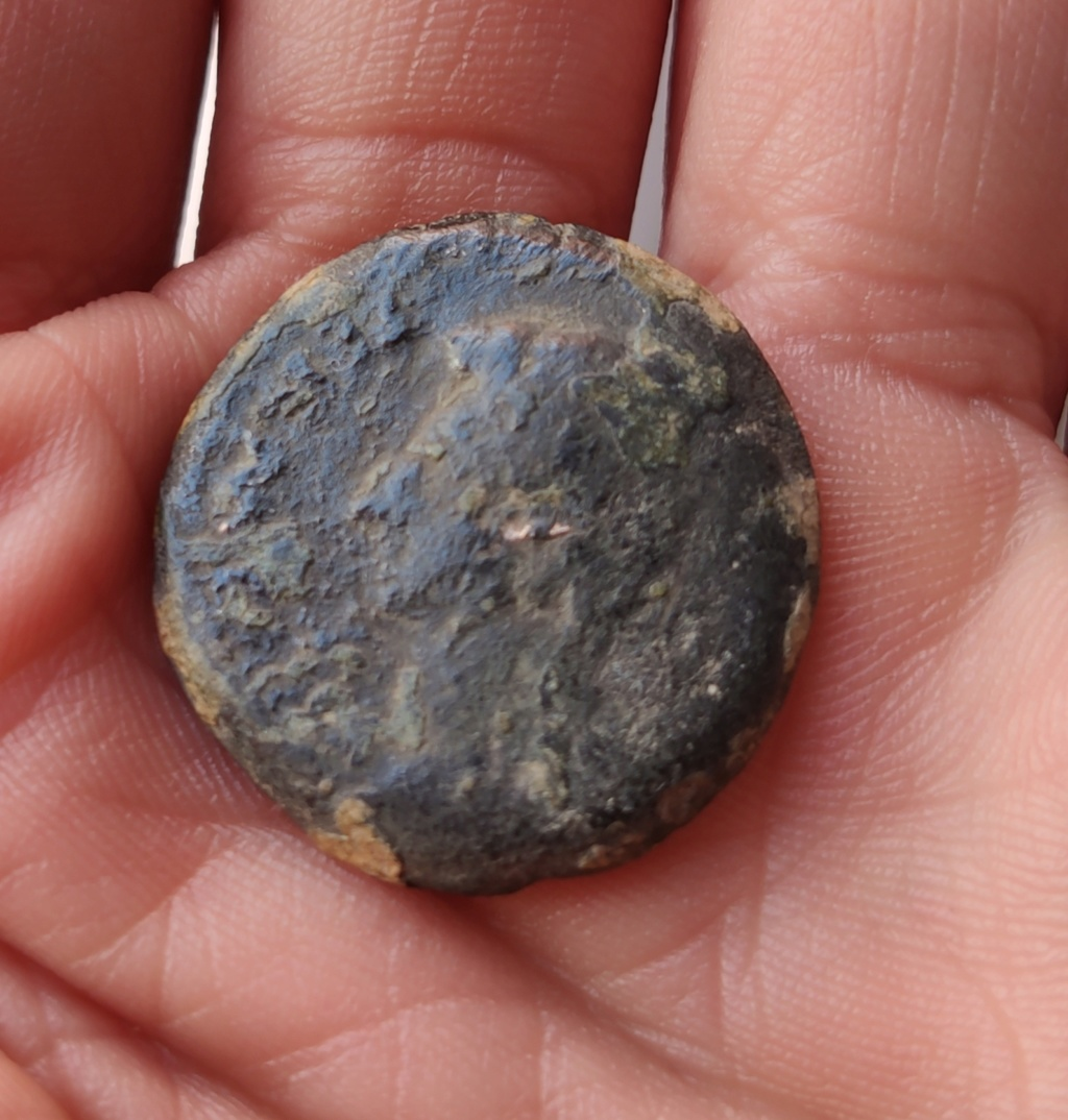 As de Colonia Patricia, tiempos de Augusto. COLONIA PATRICIA dentro de corona. Img_2032