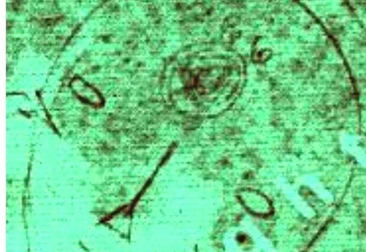 Resfrio de la cabeza y la garganta será el principio de la gran peste X Covid-19 Ogu10