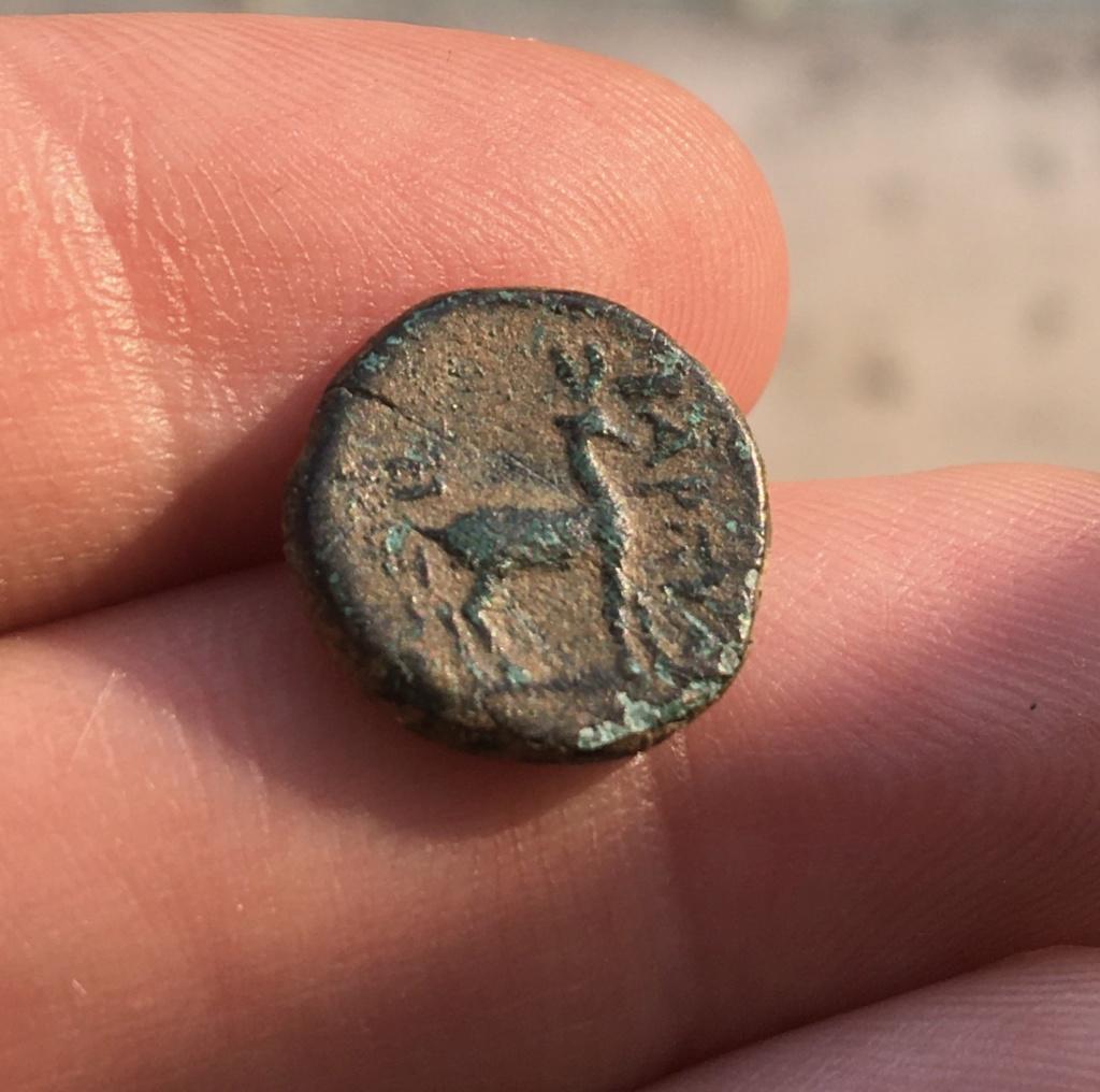 Petit bronze au cerf à identifier  5ce3aa10