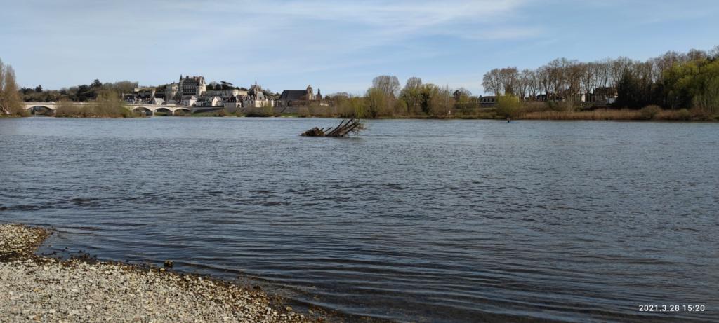 Balade AMBOISE 37 et bords de Loire Img_2144