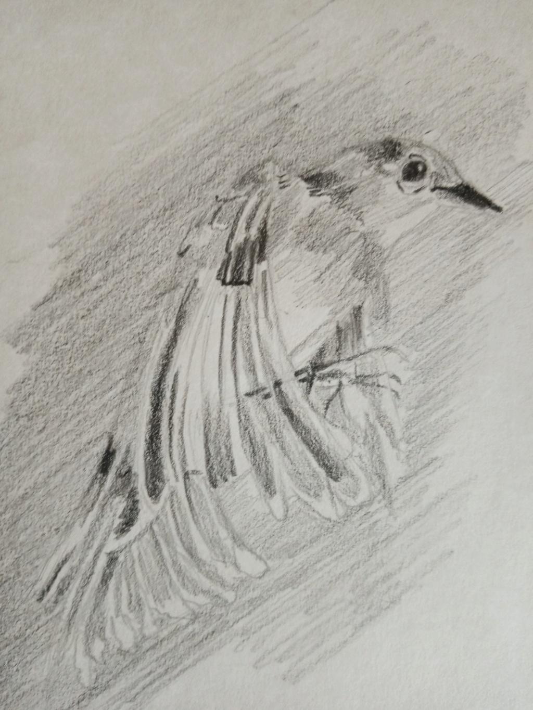 un de mes tableaux - Page 18 Img_2097