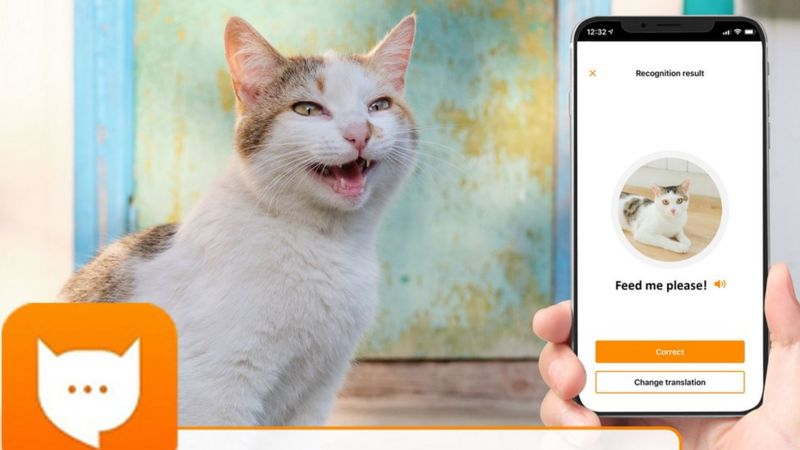 App launched to translate your cat's miaow! _1155510