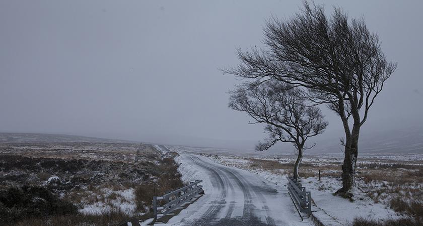The Irish Thread - Page 2 Snow-n10