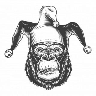 Ici, postez une chose positive de votre journée - Page 9 Gorill10