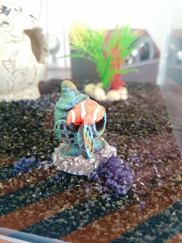 Dépôt inconnu dans le fond de l'aquarium  Img_2013