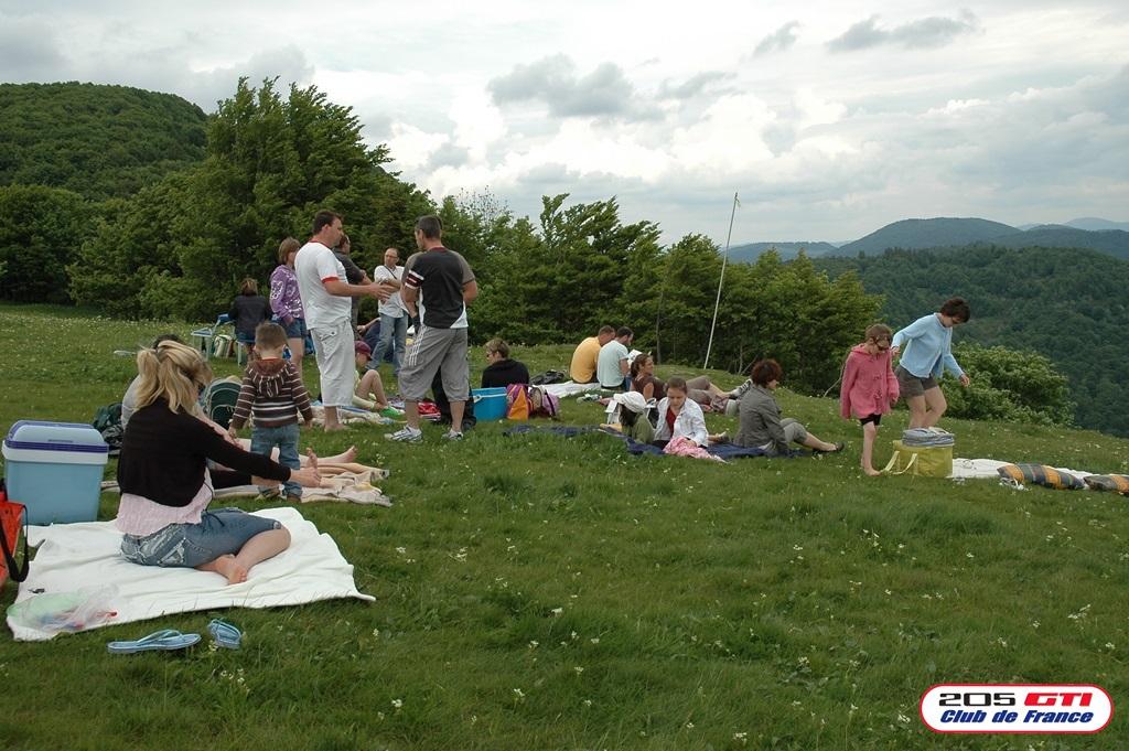 [90-68-88] Ballon d'Alsace Rencontre au Sommet - 6 juin 2010 Dsc_0017