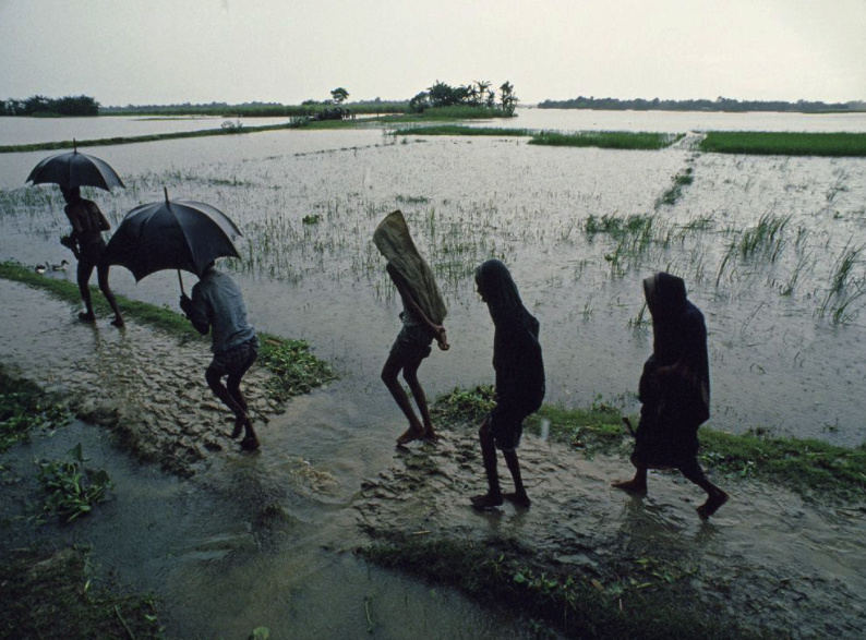 How rainfalls affect the economic growth of South Asian Countries Screen10