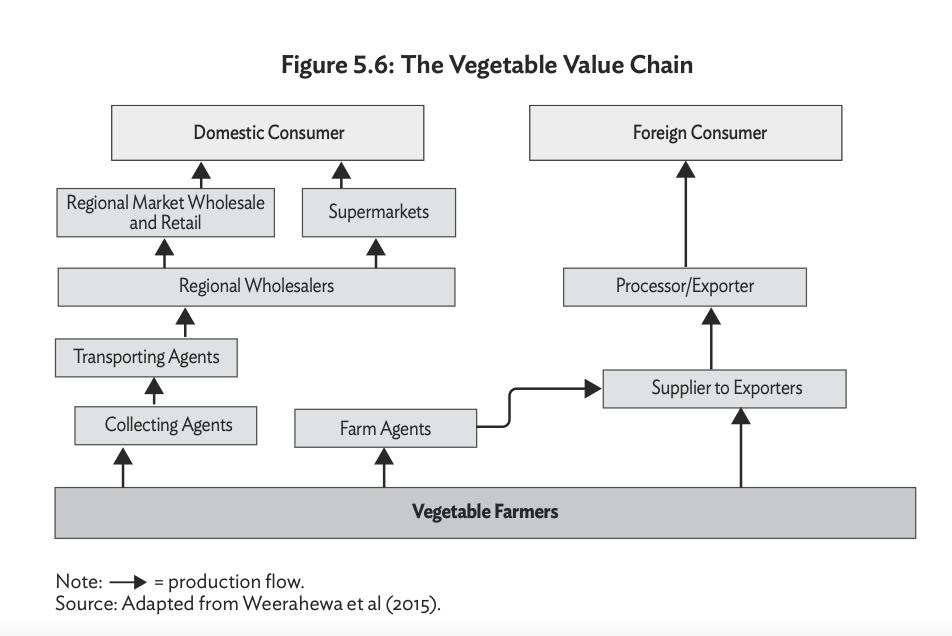 Key Economic Value Chains in Sri Lanka Screen41