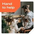 FBS CopyTrade Support: 必要なときに助けてくれる!  Copytr10