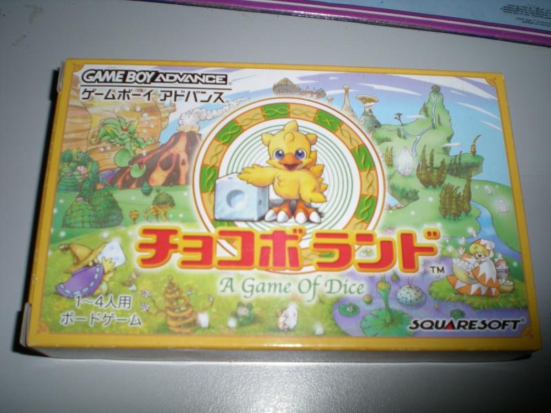 Final Fantasy Forever Dscn1036