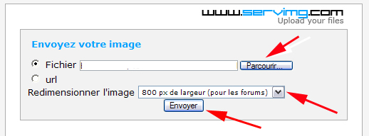 Aide : Comment insérer une image Servim12