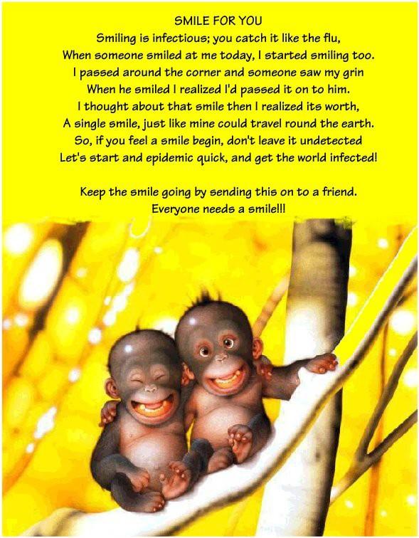 Epidémie Monkey10