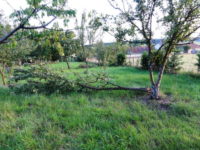 Un violent orage sur ma commune Dsc09510