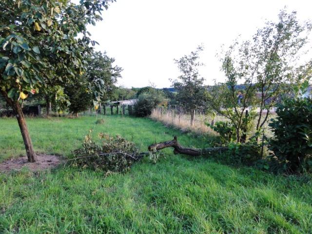 Un violent orage sur ma commune Dsc09511