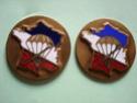 Les insignes du Bataillon de Choc N4insi10