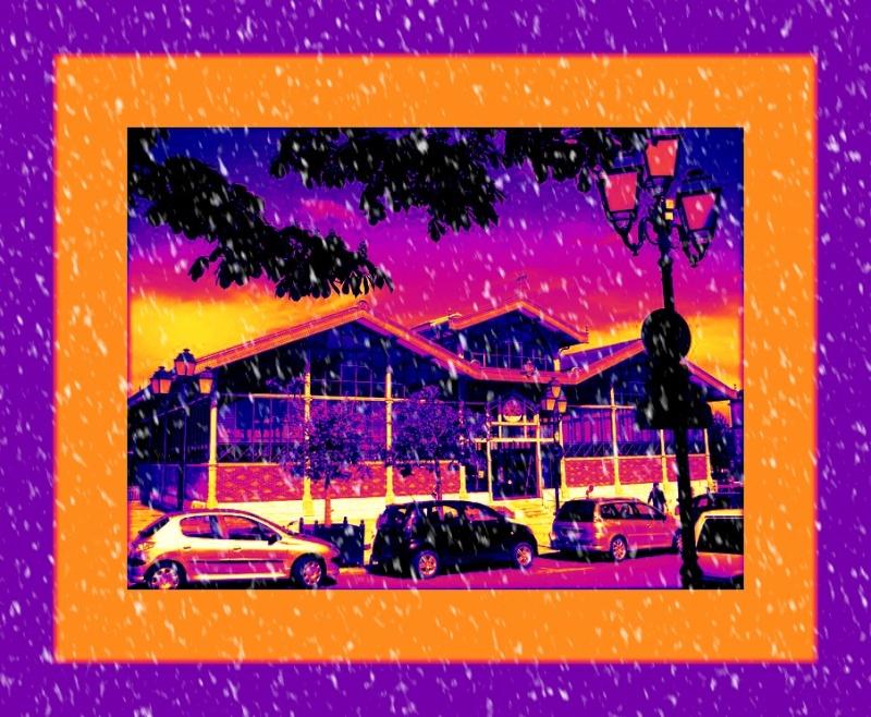 une image ,des photos Dsc02322