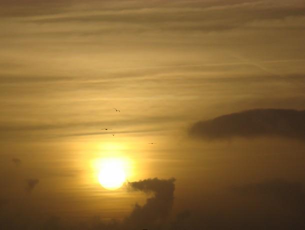 LES COUCHERS DE SOLEIL. et lever de soleil Dsc03064