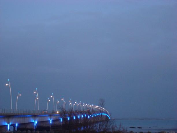 ponts et oiseaux Dsc03126