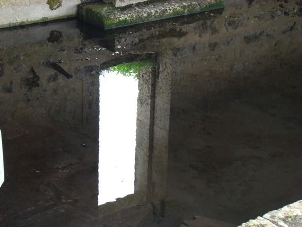 petit lavoir charentais Dsc04274