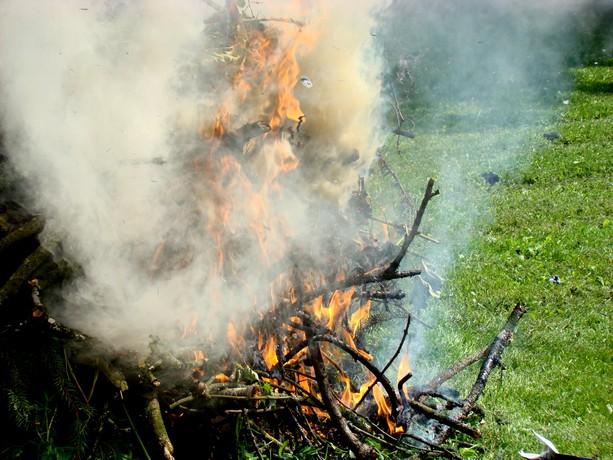 le feu ,j'aime même si parfois on préfére ne pas le voir arriver Dsc07113