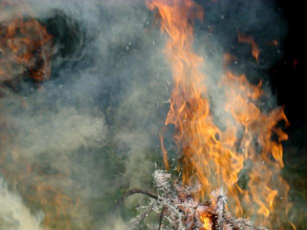 le feu ,j'aime même si parfois on préfére ne pas le voir arriver Dsc07116