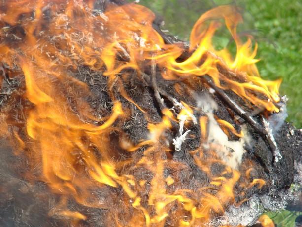 le feu ,j'aime même si parfois on préfére ne pas le voir arriver Dsc07120