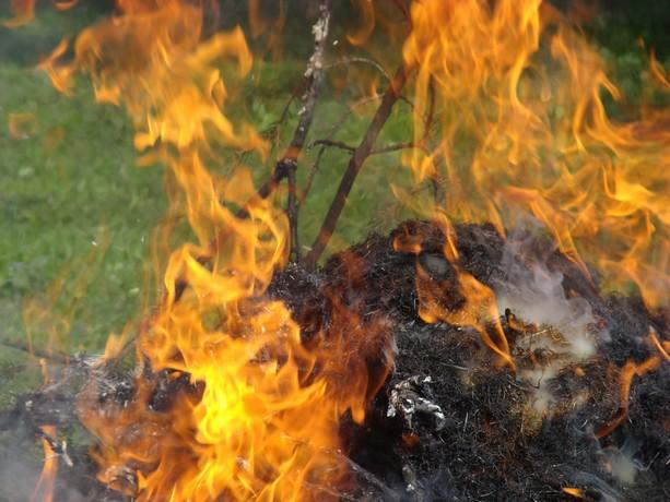 le feu ,j'aime même si parfois on préfére ne pas le voir arriver Dsc07121