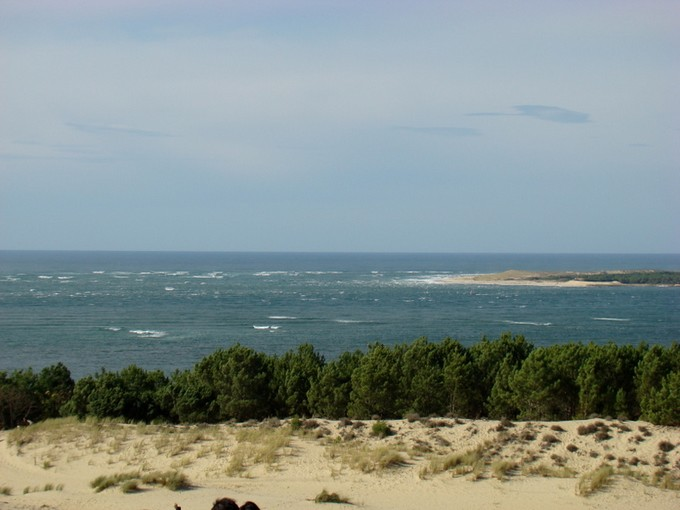 biscarosse fin octobre 2011,dune du pyla Dsc09812