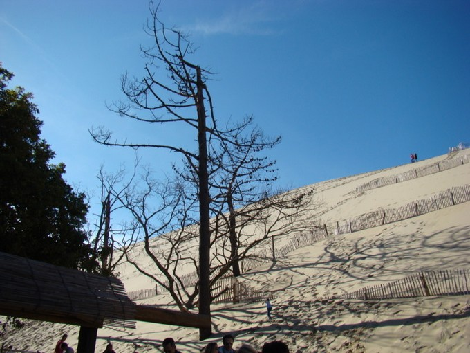 biscarosse fin octobre 2011,dune du pyla Dsc09817