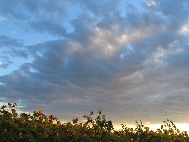 LES COUCHERS DE SOLEIL. et lever de soleil Img_0098