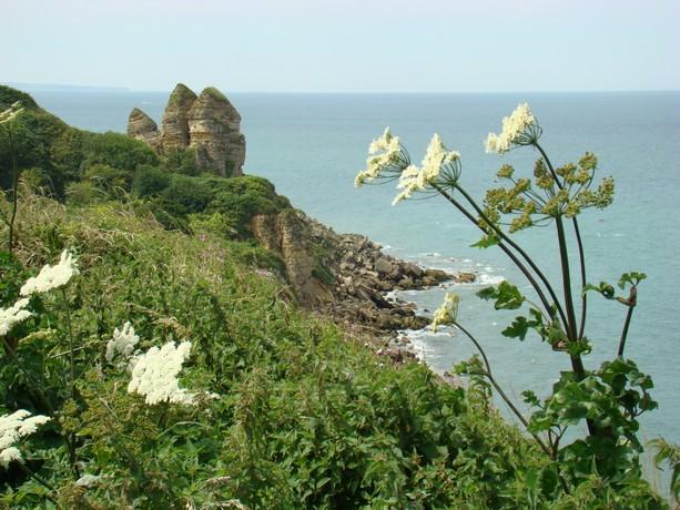 mon voyage en normandie, Courseuilles, Arromanche, OMAHA, Port en Bessin, Douvres la Delivrande Le_cha15