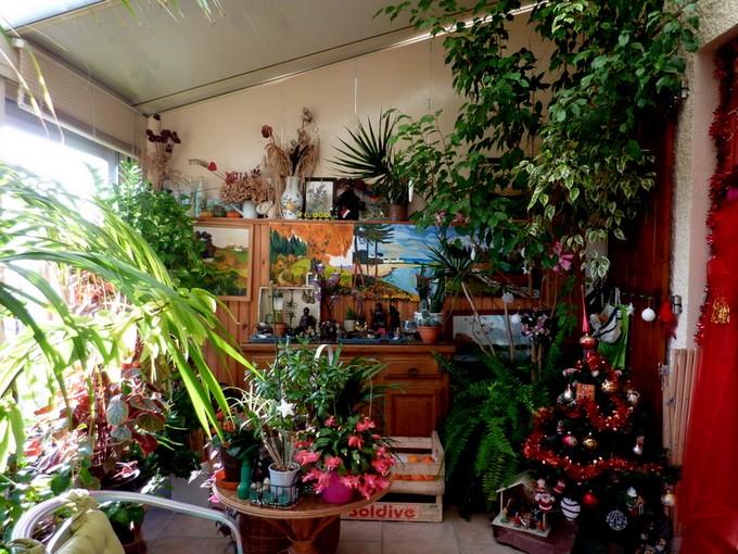 photos fleurs de marie (album 2) P1060526