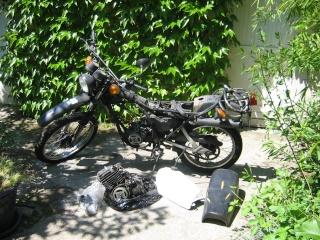 DTMX 125 cc MEMBRES : Personnalisées 001dtm10
