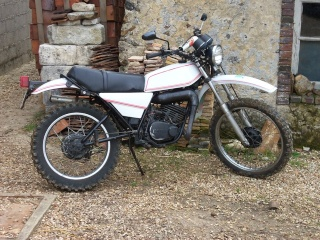 DTMX 125 cc MEMBRES : Personnalisées 10002310