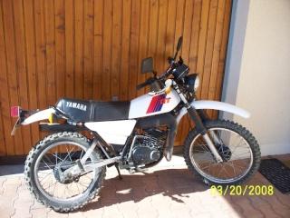 DTMX 125cc Membres / Mod. 1981 100_0211