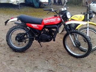 DTMX 125 cc MEMBRES : Personnalisées 32116610