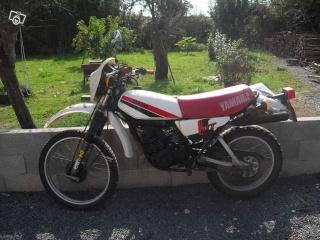 DTMX 125cc Membres / Mod. 1980 41682110