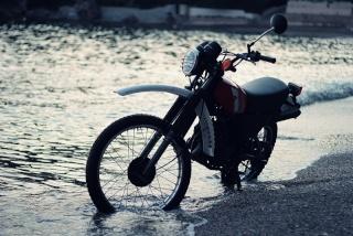 DTMX 125cc Membres / Mod. 1981 45774810