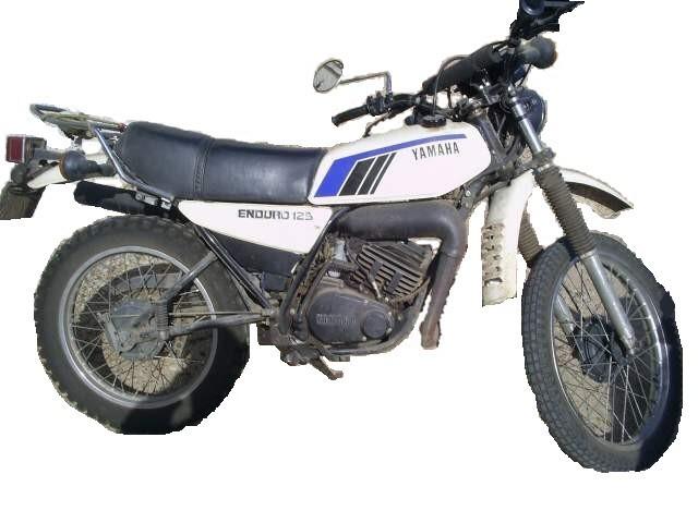 Les différents modèles de 125 DTMX 79_1811
