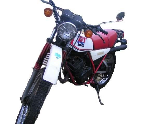 Les différents modèles de 125 DTMX 86_310