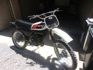 DTMX 125 cc MEMBRES : Personnalisées Cimg2710